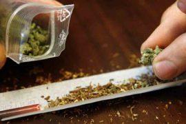 NO PASARÁN : UNE VISION OBJECTIVE D'UNE POLITIQUE DE PRÉVENTION ALCOOL ET AUTRES DROGUES